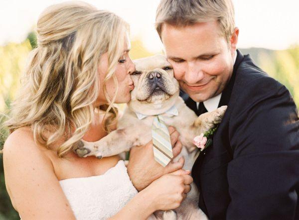 Monday Inspiration: dress code para los animales en tu boda